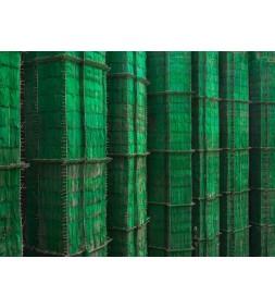 Green Cocoon Walls, Hong Kong